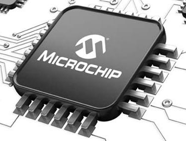 Microchip chip