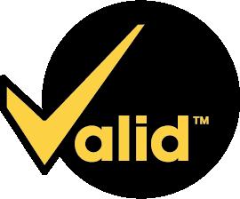 Valid Manufacturing Primary-CMYK-PANTONE_TM